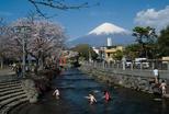 www.miyachou.com_358.jpg, SIZE:640x434(84.9KB)