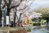 www.miyachou.com_371.jpg, SIZE:640x428(117.6KB)