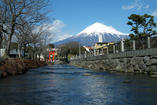 www.miyachou.com_278.jpg, SIZE:540x361(59.3KB)