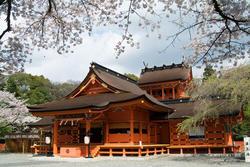 www.miyachou.com_414.jpg, SIZE:640x428(106.8KB)