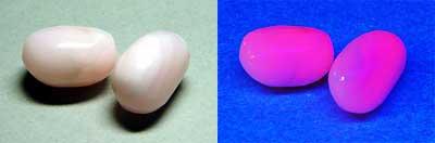ピンクカルサイト-1