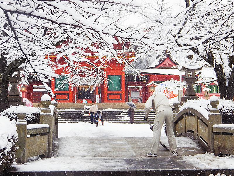 浅間大社雪景色2