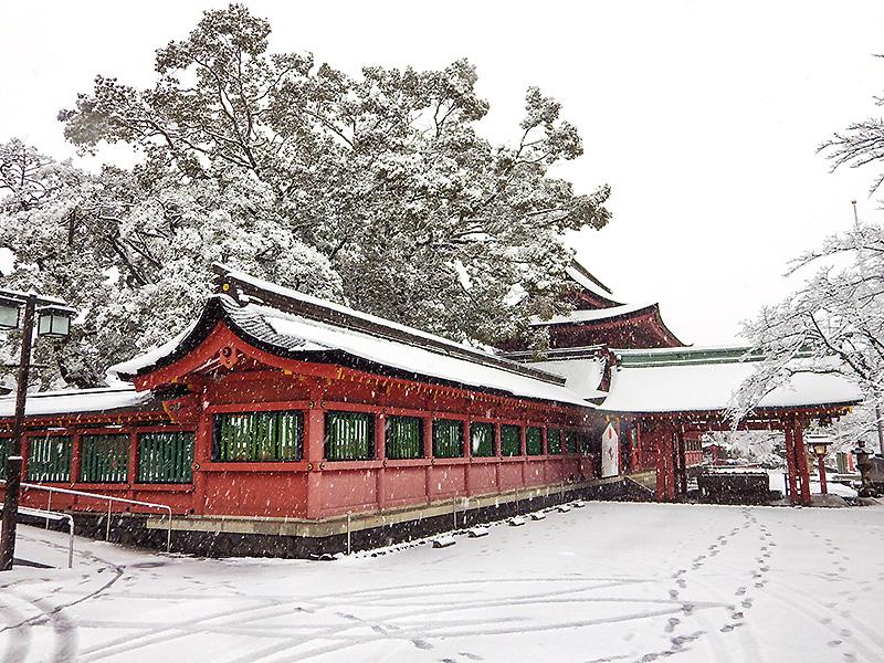 浅間大社雪景色4