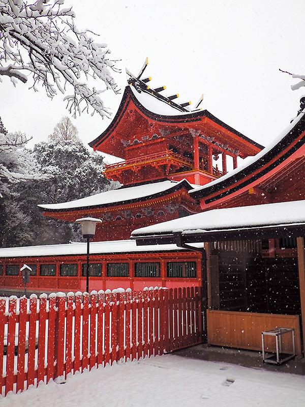 浅間大社雪景色6