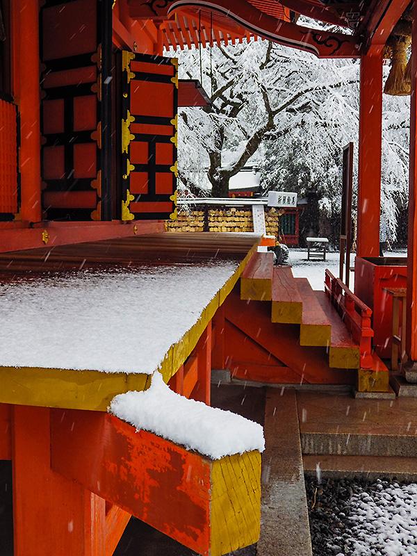 浅間大社雪景色7