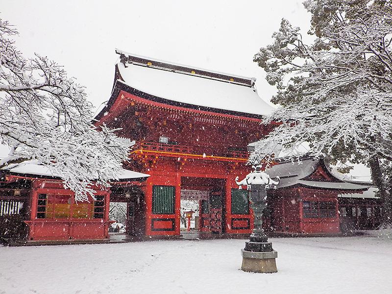 浅間大社雪景色8