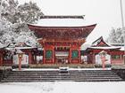 大雪の浅間大社3